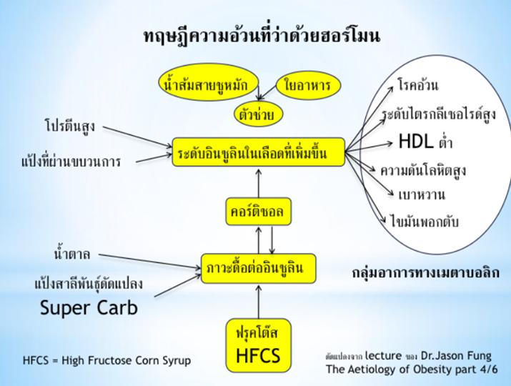 ทฤษฎีความอ้วนที่ว่าด้วยฮอร์โมน