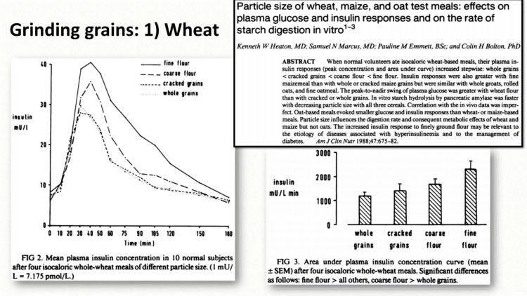 รูปที่ 4 : ชัดเจนมากว่า ขบวนการในการบดป่นแป้ง ทำให้อินซูลินถูกสร้างด้วยปริมาณที่ต่างกัน เทียบระหว่างแป้งสาลีผ่านขบวนการ กับ whole grain