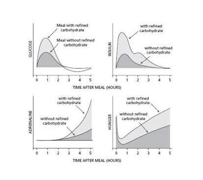 รูปที่ 1 : ระดับกลูโคส อินซูลิน แอดดรีนาลิน และความหิว ที่สูงกว่า ในมื้ออาหารที่ประกอบด้วยคาร์โบไฮเดรตผ่านขบวนการ เมื่อเปรียบเทียบกับ มื้ออาหารที่ไม่มีคาร์โบไฮเดรตผ่านขบวนการ