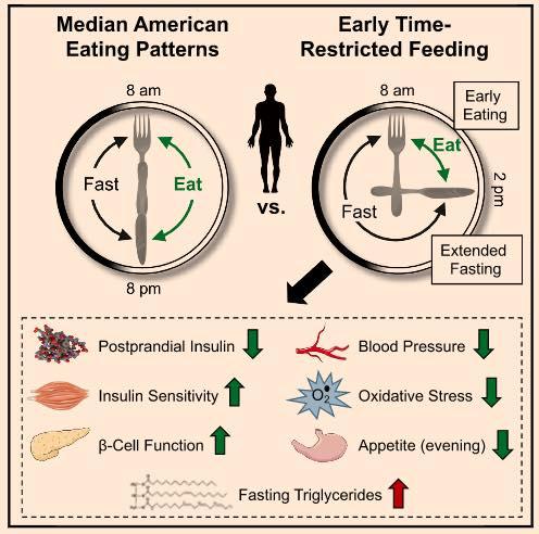 รูปที่ 3 : eTRF ช่วยปรับปรุง metabolic markers ต่างๆมากมาย