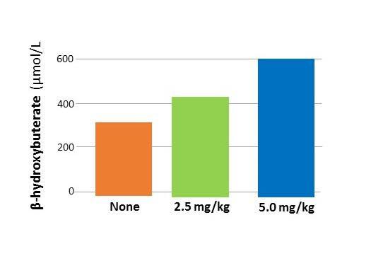 รูปที่ 3 : ระดับ beta hydroxybutyrate ในกลุ่มทดลอง 3 กลุ่ม สีส้ม กลุ่มควบคุม สีเขียวดื่มกาแฟ 1.5 ถ้วย สีน้ำเงิน ดื่มกาแฟ 3 ถ้วย
