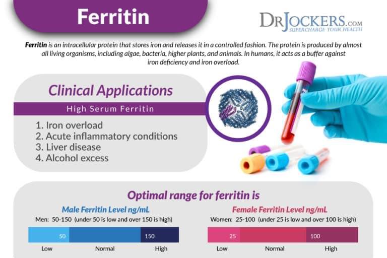 รูปที่ 5 : การทดสอบระดับ Ferritin ในร่างกาย