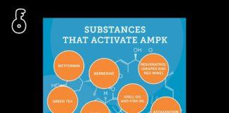 Substances that activate AMPK