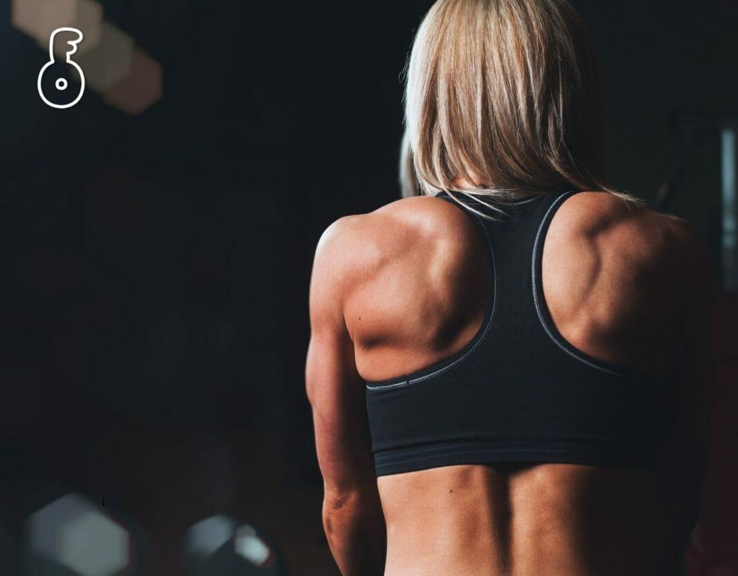 กฎเหล็ก 4 ข้อสำหรับการสร้างและรักษามวลกล้ามเนื้อ (ตอนที่ 1) (4 laws of muscle)