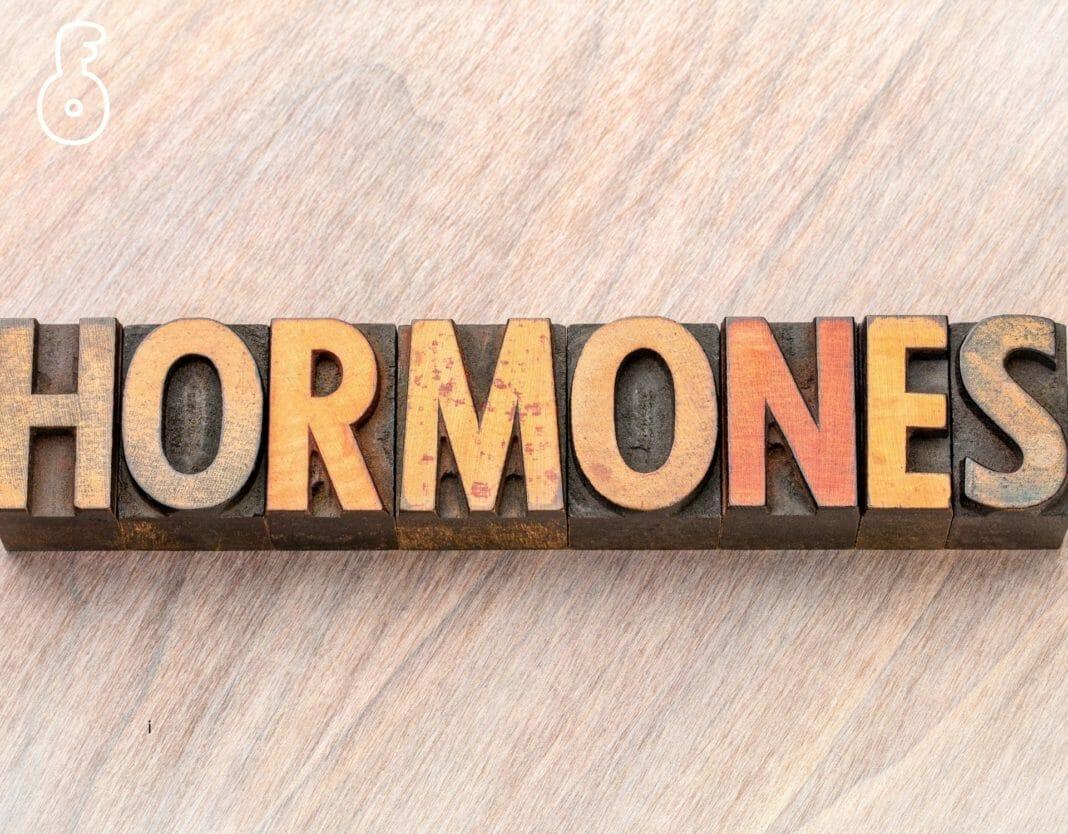 ฮอร์โมนสำคัญ ที่เกี่ยวข้องกับความอ้วน และวิธีจัดการ