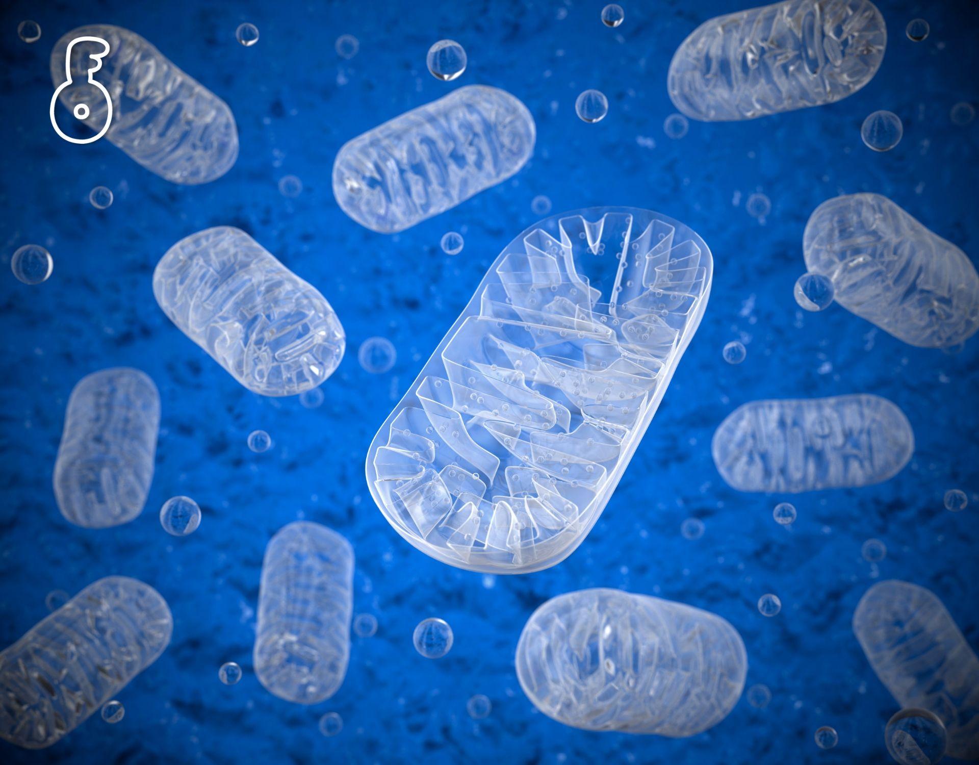 ไมโตคอนเดรียหยุดทำงานสาเหตุที่เซลล์หยุดใช้ออกซิเจนเป็นพลังงาน