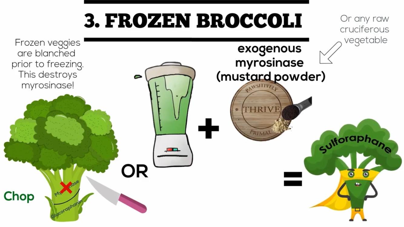 วิธีที่ 3 : ถ้ามีบร็อคโคลี่แช่แข็ง จะสูญเสียเอนไซม์ Myrosinase จากขบวนการผลิตทางอุตสาหกรรม คือการลวกก่อนนำไปแช่แข็ง