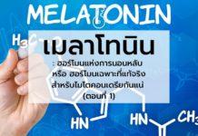 เมลาโทนิน : ฮอร์โมนแห่งการนอนหลับ หรือ ฮอร์โมนเฉพาะที่แท้จริงสำหรับไมโตคอนเดรียกันแน่ (ตอนที่ 1)