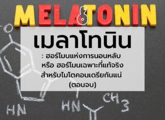 เมลาโทนิน : ฮอร์โมนแห่งการนอนหลับ หรือ ฮอร์โมนเฉพาะที่แท้จริงสำหรับไมโตคอนเดรียกันแน่ (ตอนจบ)
