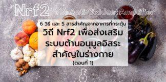 6 วิธี และ 5 สารสำคัญจากอาหาร ที่กระตุ้นวิถี Nrf2 เพื่อส่งเสริมระบบต้านอนุมูลอิสระสำคัญในร่างกาย (ตอนที่ 1)