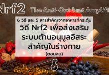 6 วิธี และ 5 สารสำคัญจากอาหาร ที่กระตุ้นวิถี Nrf2 เพื่อส่งเสริมระบบต้านอนุมูลอิสระสำคัญในร่างกาย (ตอนจบ)
