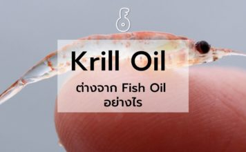 Krill Oil ต่างจาก Fish Oil อย่างไร